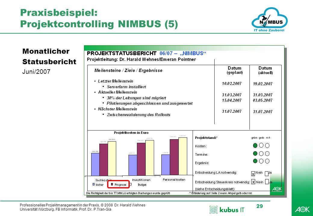 Praxisbeispiel: Projektcontrolling NIMBUS (5)
