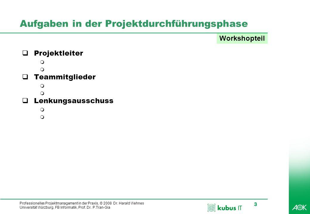 Aufgaben in der Projektdurchführungsphase