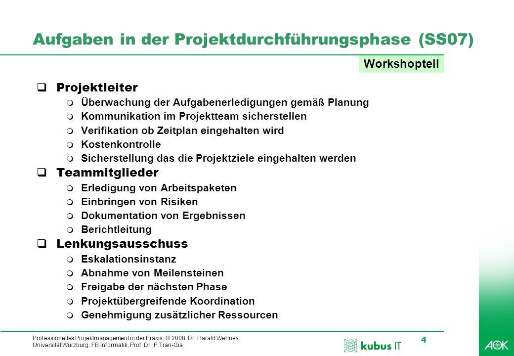 Aufgaben in der Projektdurchführungsphase (SS07)