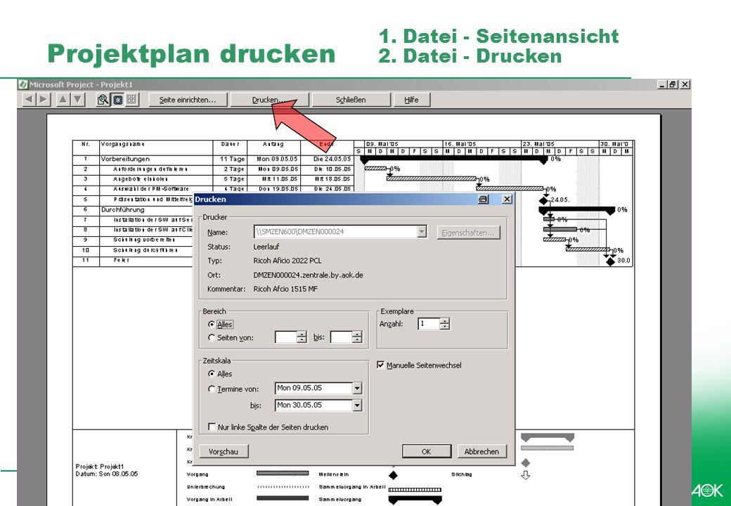 Projektplan drucken 1. Datei - Seitenansicht 2. Datei - Drucken
