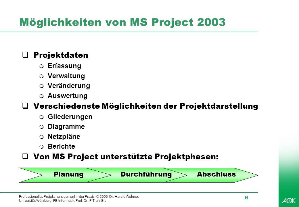 Möglichkeiten von MS Project 2003
