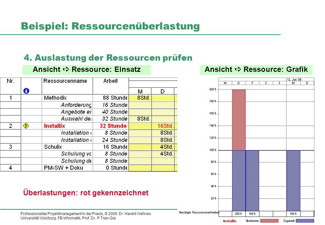 Beispiel: Ressourcenüberlastung