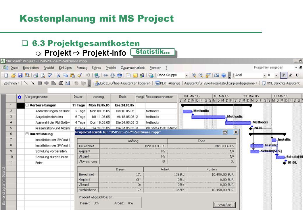 Kostenplanung mit MS Project