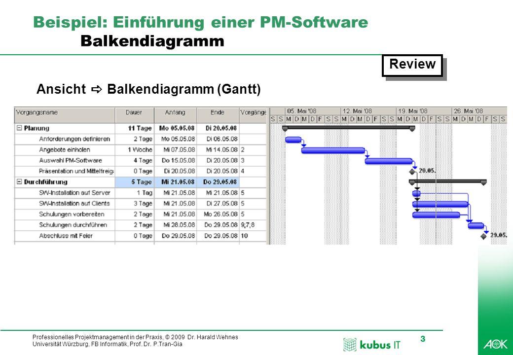 Beispiel: Einführung einer PM-Software Balkendiagramm
