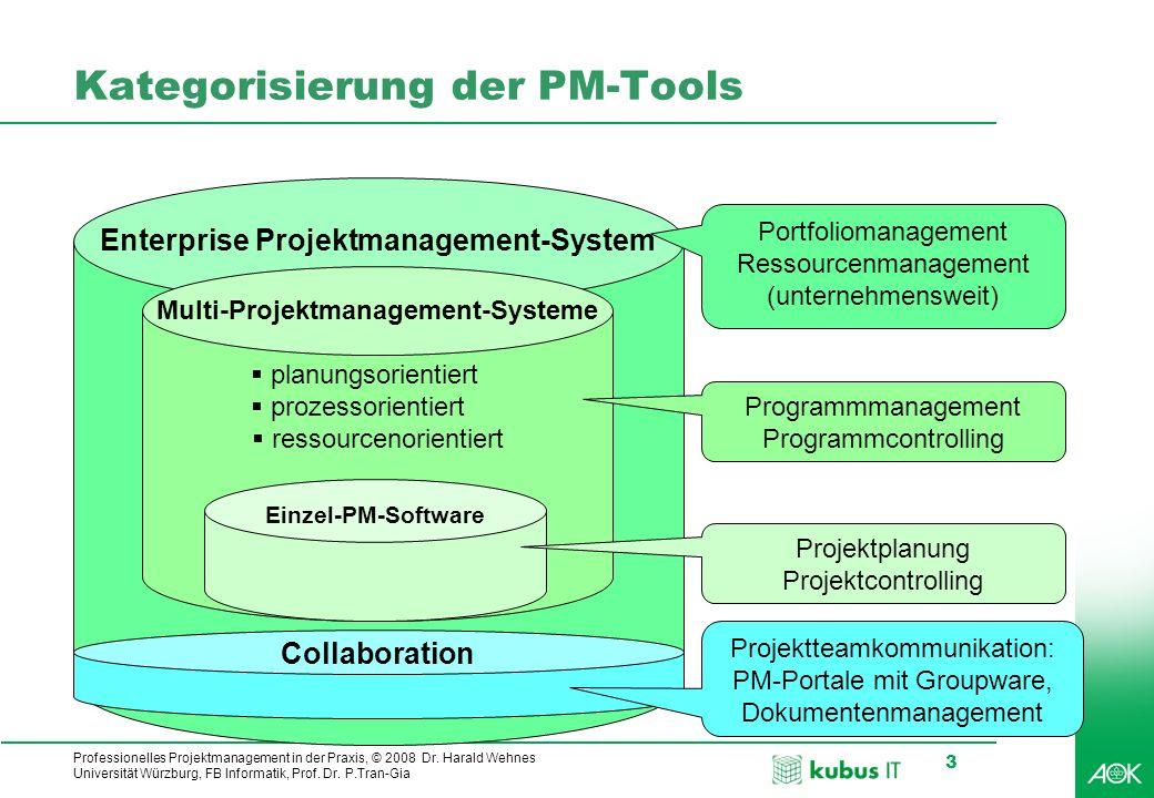 Kategorisierung der PM-Tools