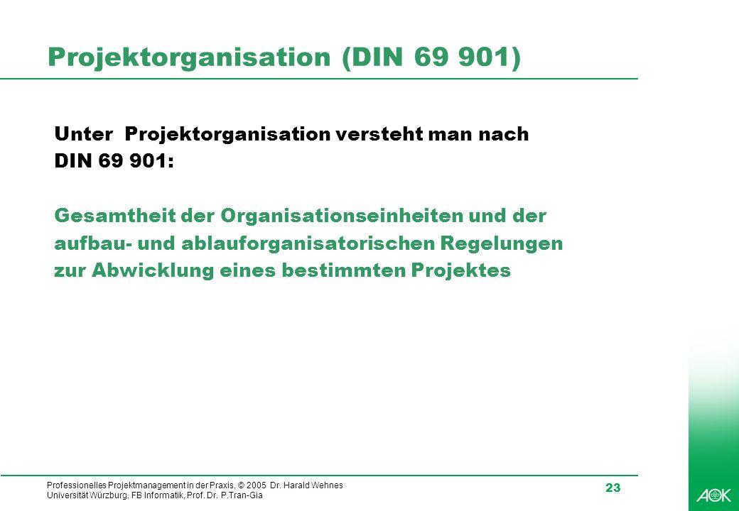 Projektorganisation (DIN 69 901)