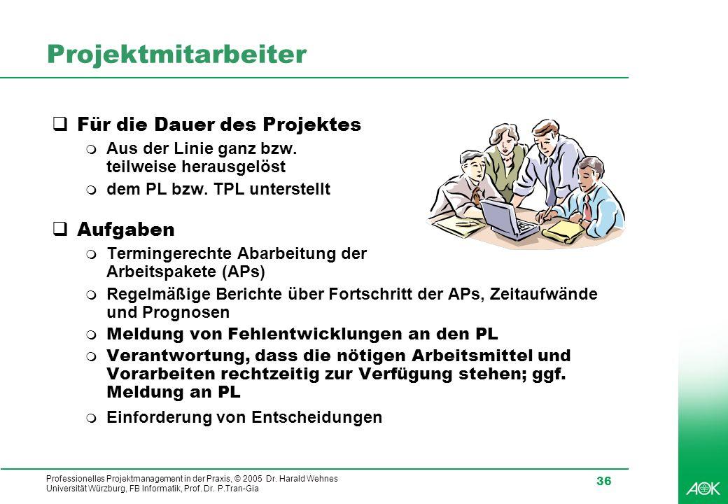 Projektmitarbeiter Für die Dauer des Projektes Aufgaben