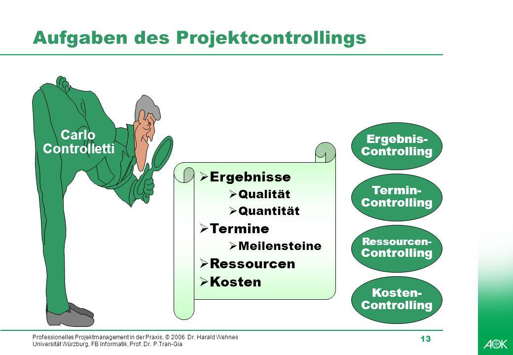 Aufgaben des Projektcontrollings