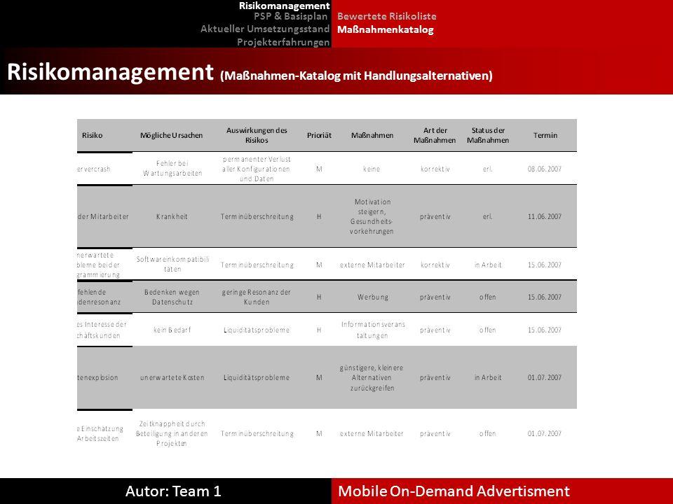 Risikomanagement (Maßnahmen-Katalog mit Handlungsalternativen)
