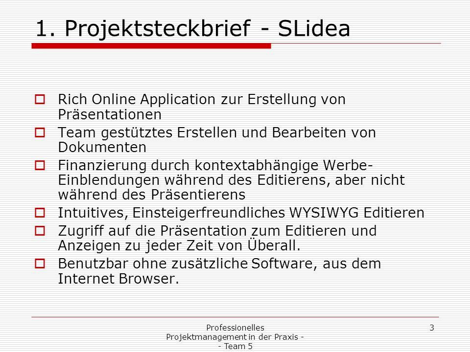 1. Projektsteckbrief - SLidea
