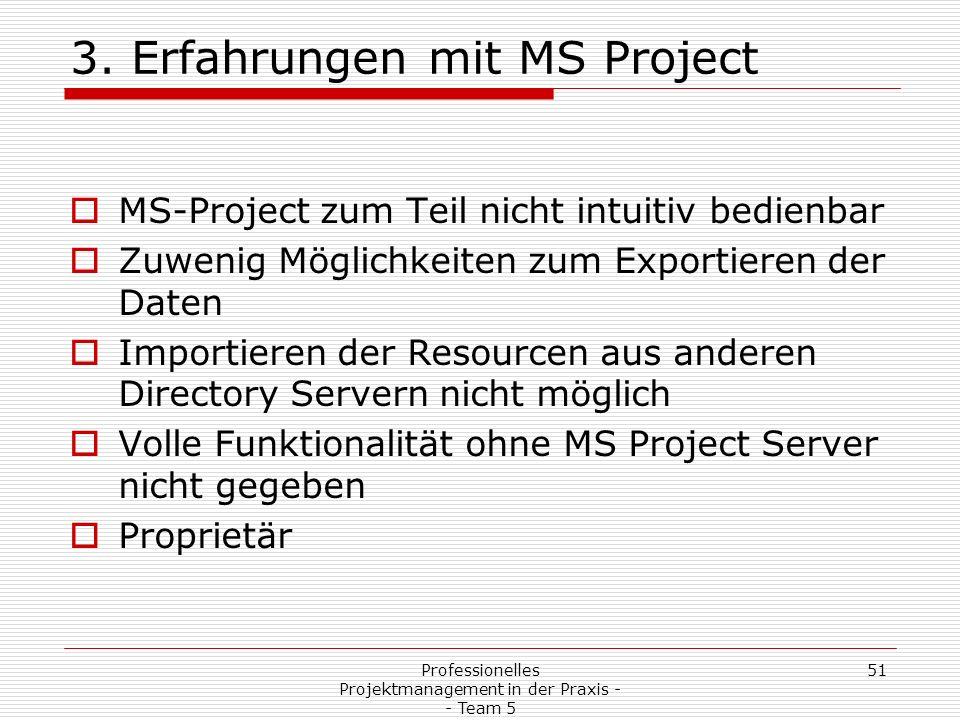 3. Erfahrungen mit MS Project