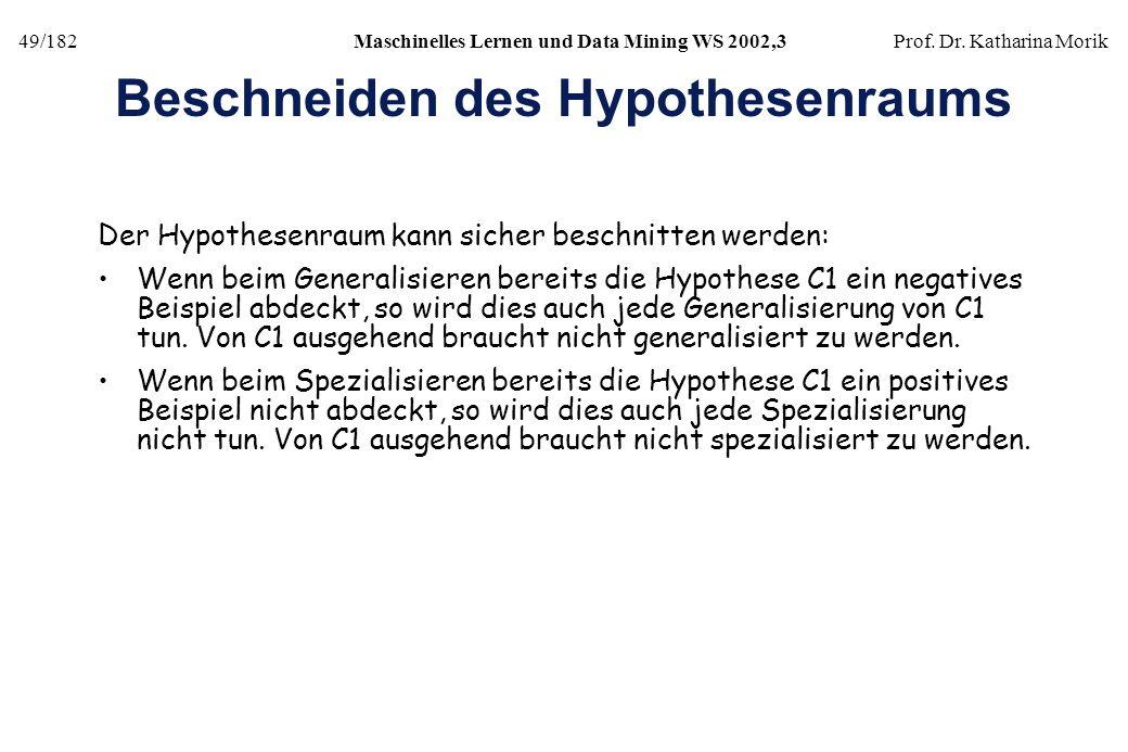 Beschneiden des Hypothesenraums