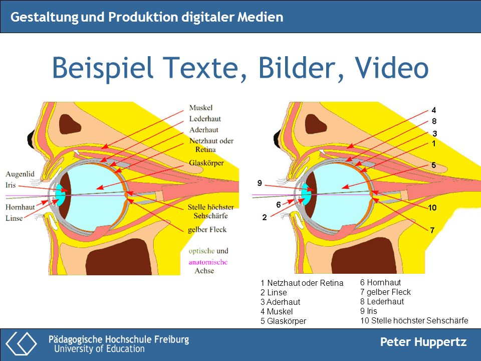 Beispiel Texte, Bilder, Video