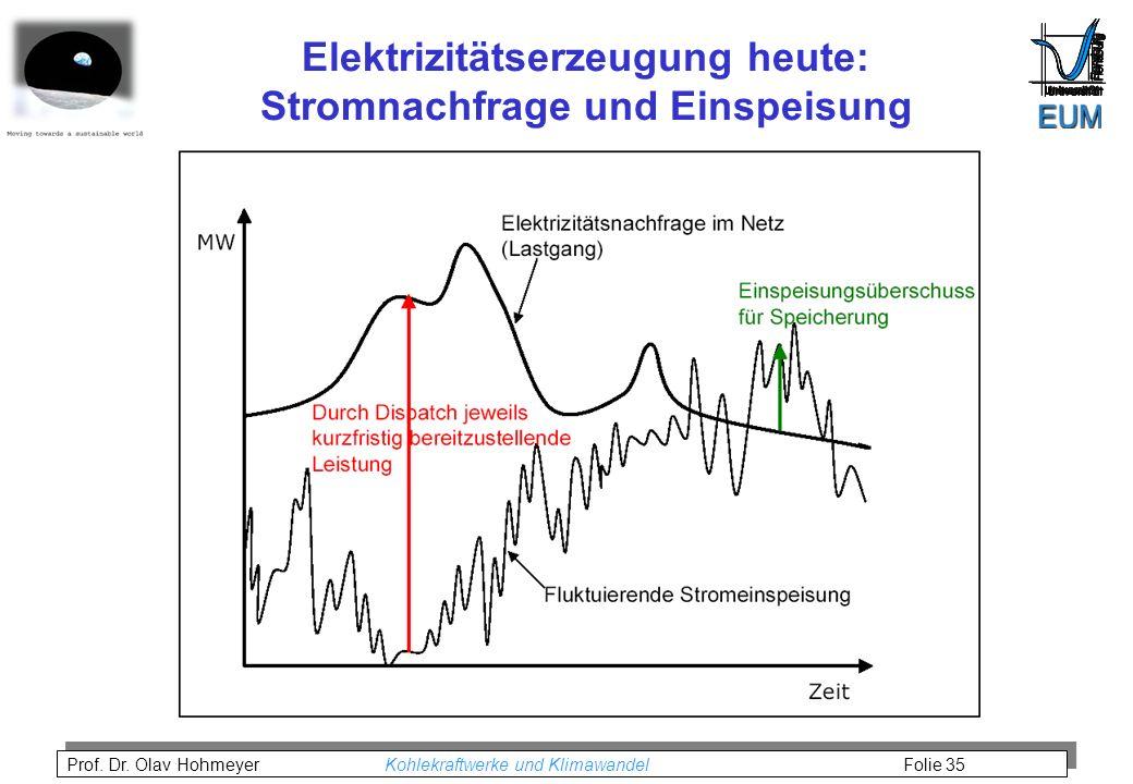 Elektrizitätserzeugung heute: Stromnachfrage und Einspeisung