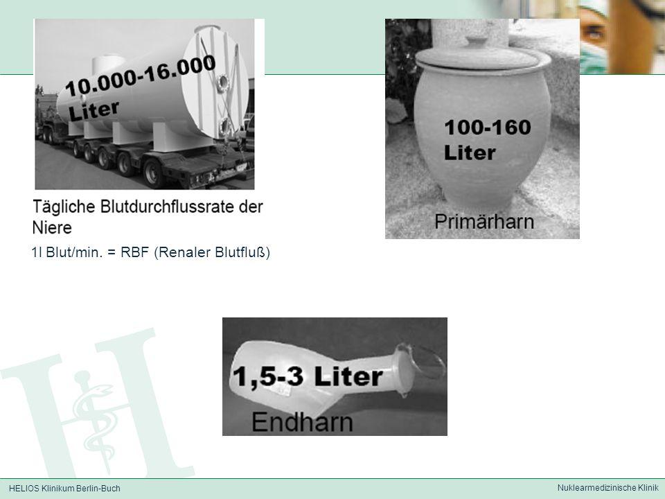 1l Blut/min. = RBF (Renaler Blutfluß)