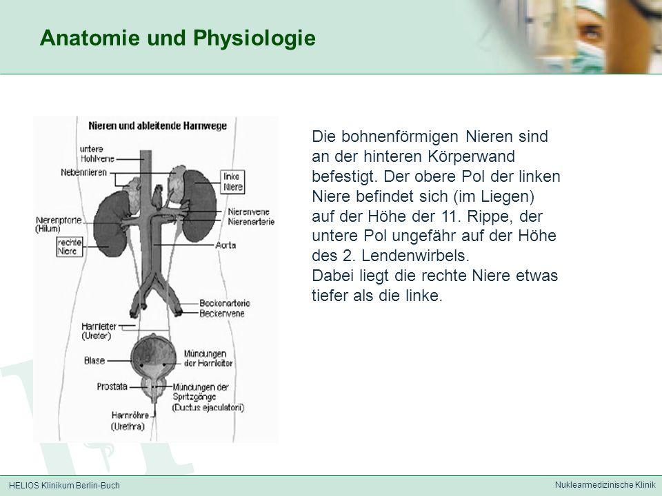 Charmant Anatomie Und Physiologie Besonderer Sinn Test Bilder ...