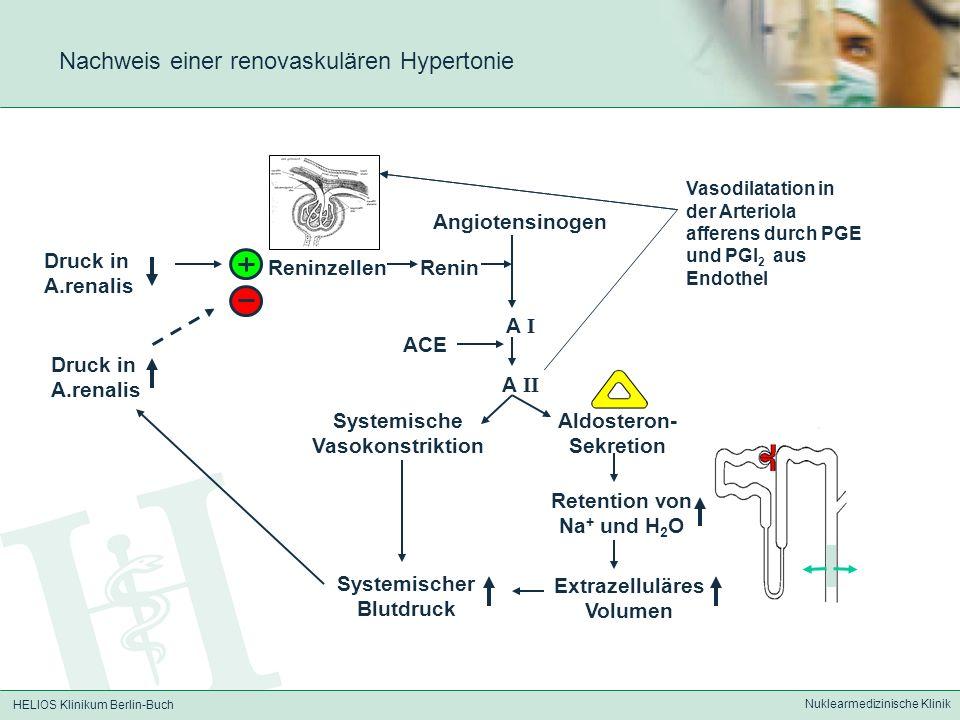 Nachweis einer renovaskulären Hypertonie