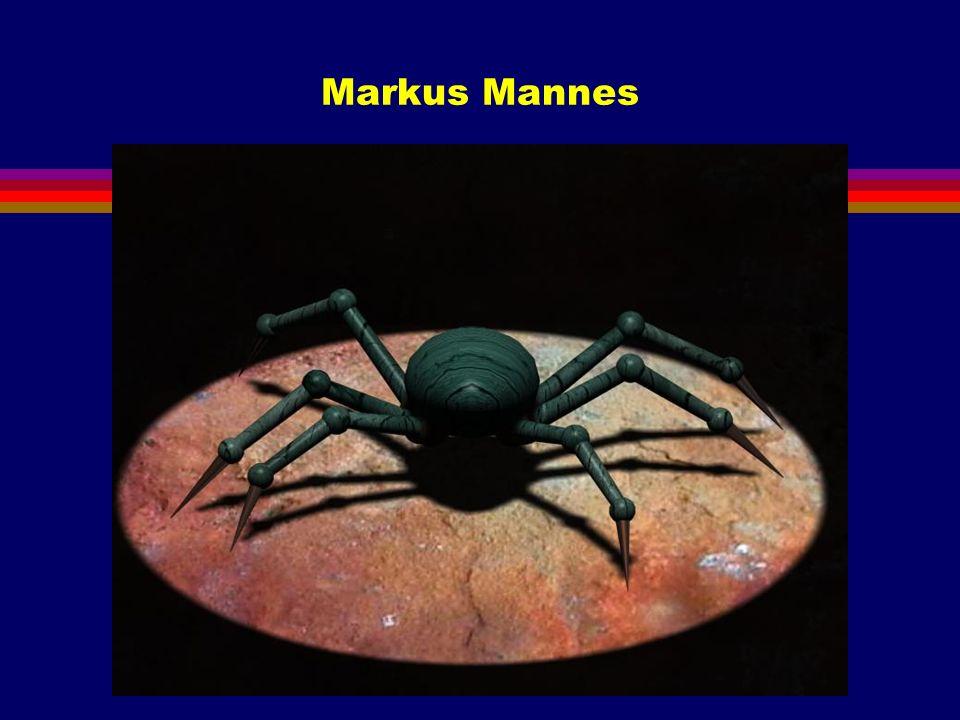 Markus Mannes