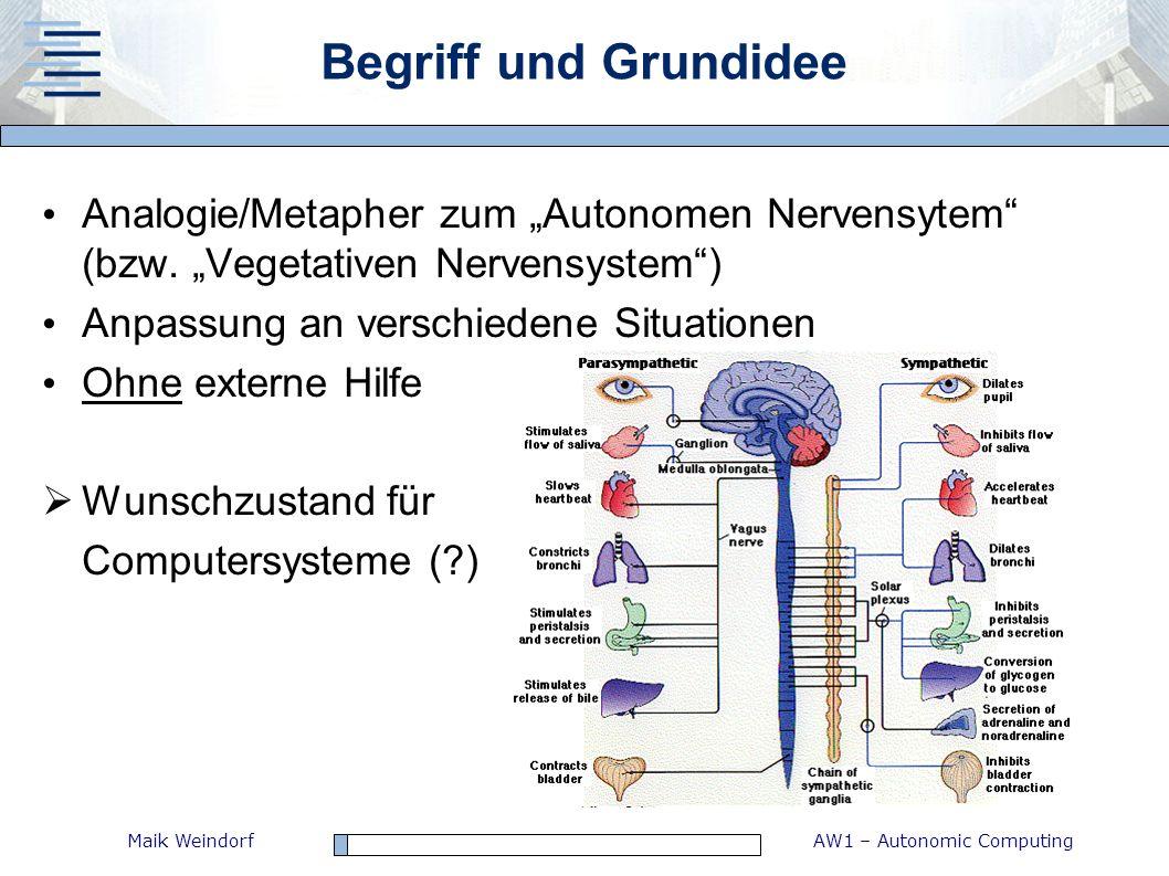 """Begriff und Grundidee Analogie/Metapher zum """"Autonomen Nervensytem (bzw. """"Vegetativen Nervensystem )"""