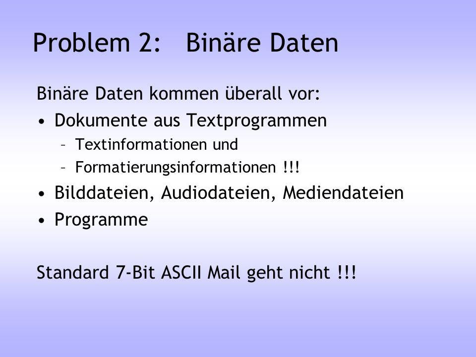 Problem 2: Binäre Daten Binäre Daten kommen überall vor: