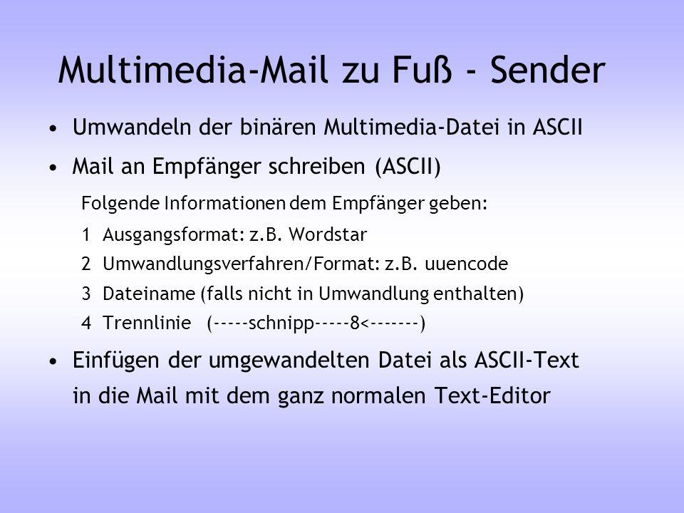 Multimedia-Mail zu Fuß - Sender