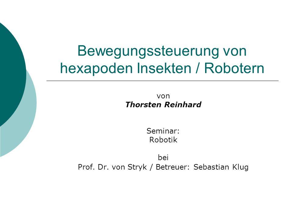 Bewegungssteuerung von hexapoden Insekten / Robotern
