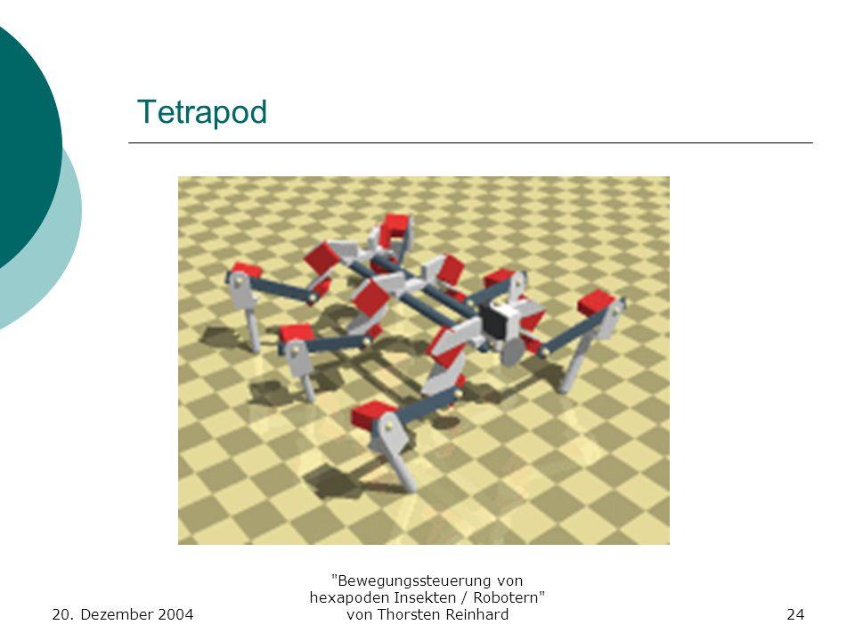 Tetrapod 20. Dezember 2004.