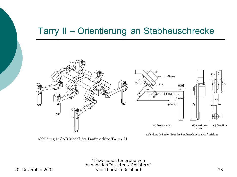 Tarry II – Orientierung an Stabheuschrecke