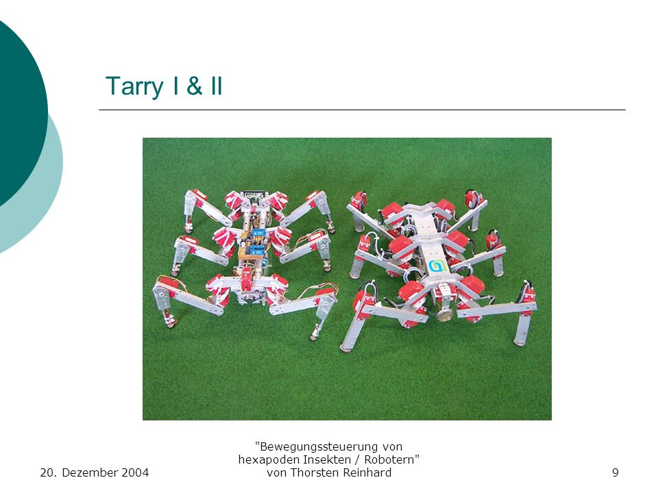 Tarry I & II20.Dezember 2004.