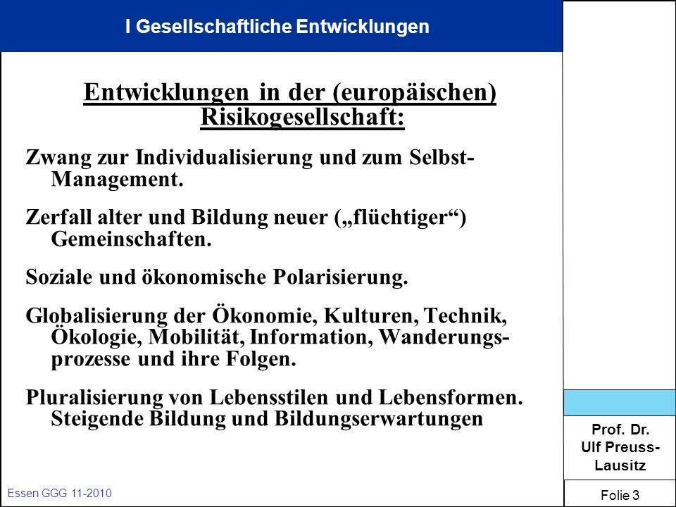Entwicklungen in der (europäischen) Risikogesellschaft:
