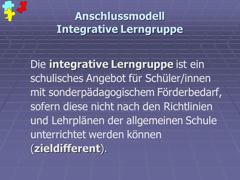 Anschlussmodell Integrative Lerngruppe