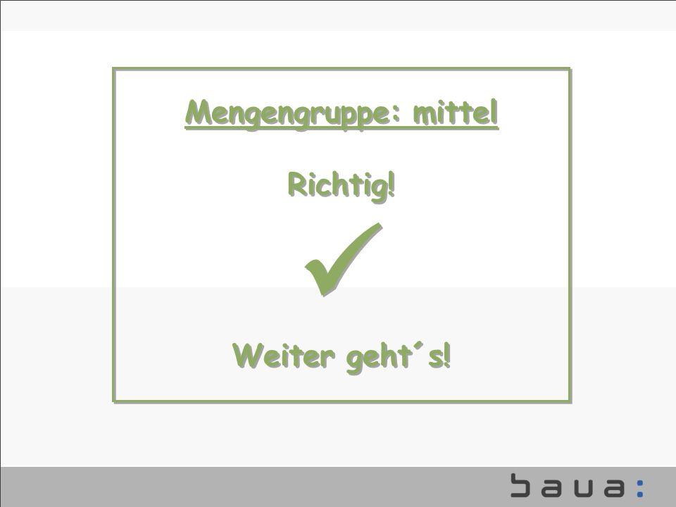 Mengengruppe: mittel Richtig!  Weiter geht´s! baua_vorlagen.ppt