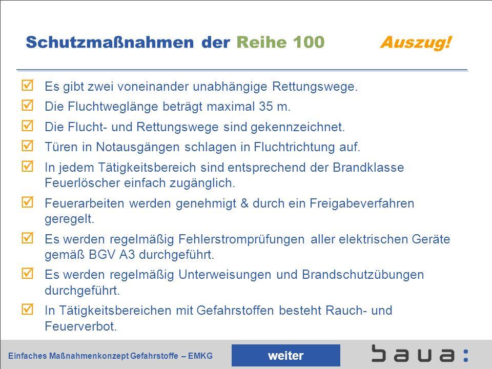 Schutzmaßnahmen der Reihe 100 Auszug!