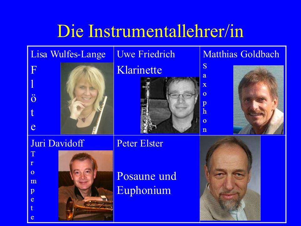 Die Instrumentallehrer/in
