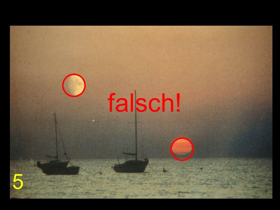 falsch! 5