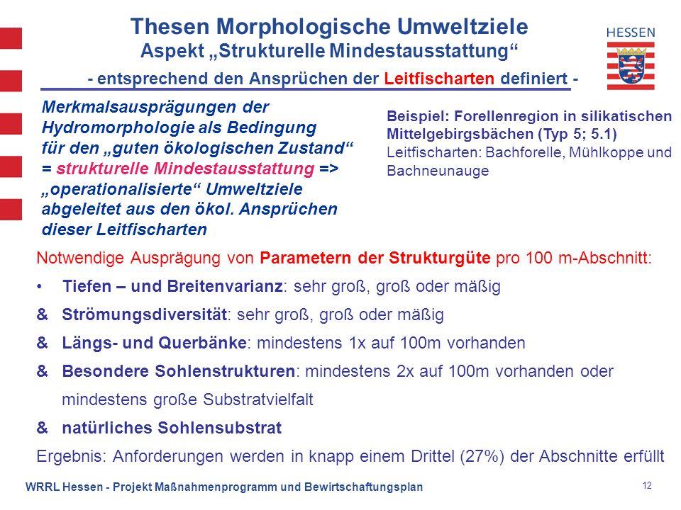 """Thesen Morphologische Umweltziele Aspekt """"Strukturelle Mindestausstattung - entsprechend den Ansprüchen der Leitfischarten definiert -"""