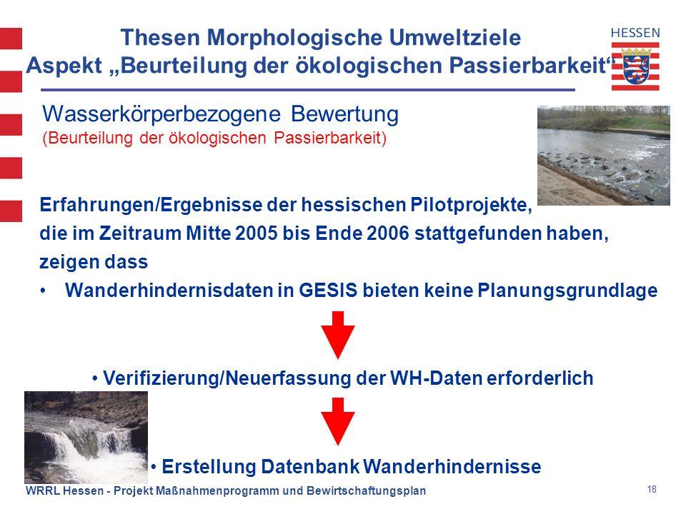 """Thesen Morphologische Umweltziele Aspekt """"Beurteilung der ökologischen Passierbarkeit"""
