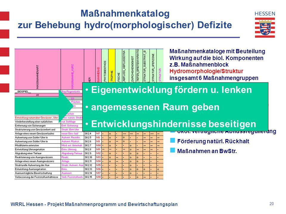 Maßnahmenkatalog zur Behebung hydro(morphologischer) Defizite