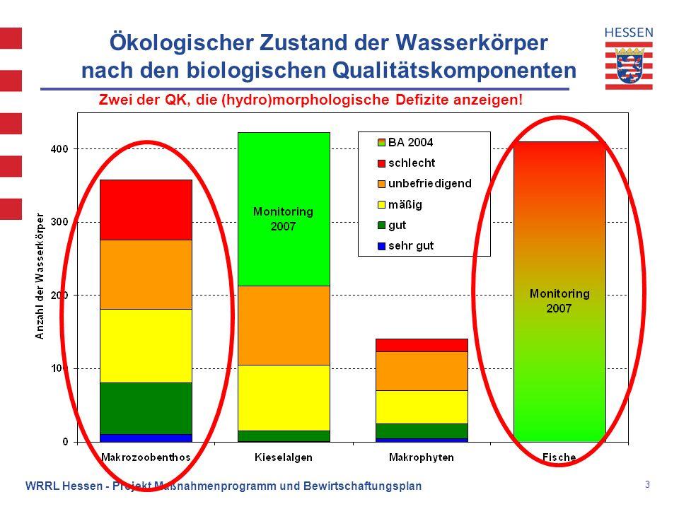 Ökologischer Zustand der Wasserkörper nach den biologischen Qualitätskomponenten