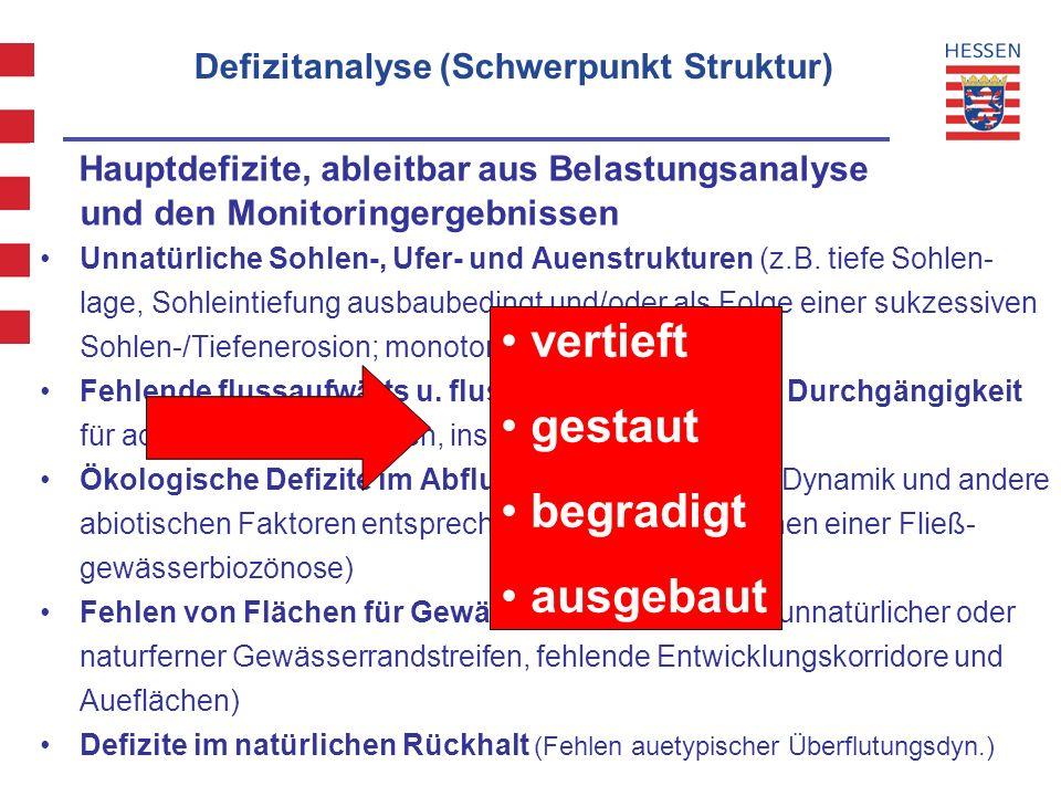 Defizitanalyse (Schwerpunkt Struktur)