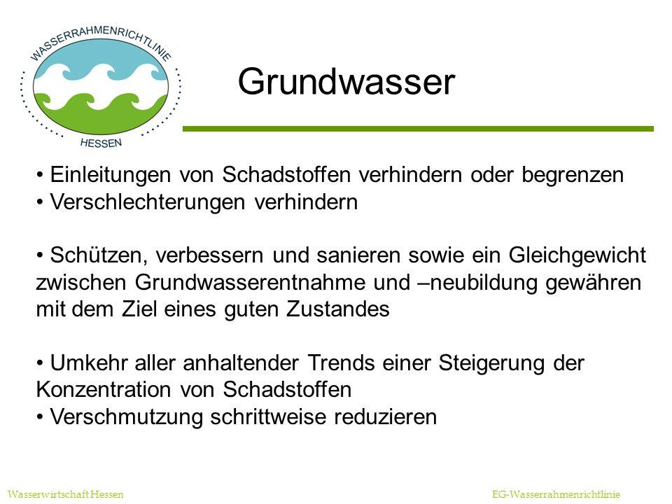 Grundwasser Einleitungen von Schadstoffen verhindern oder begrenzen