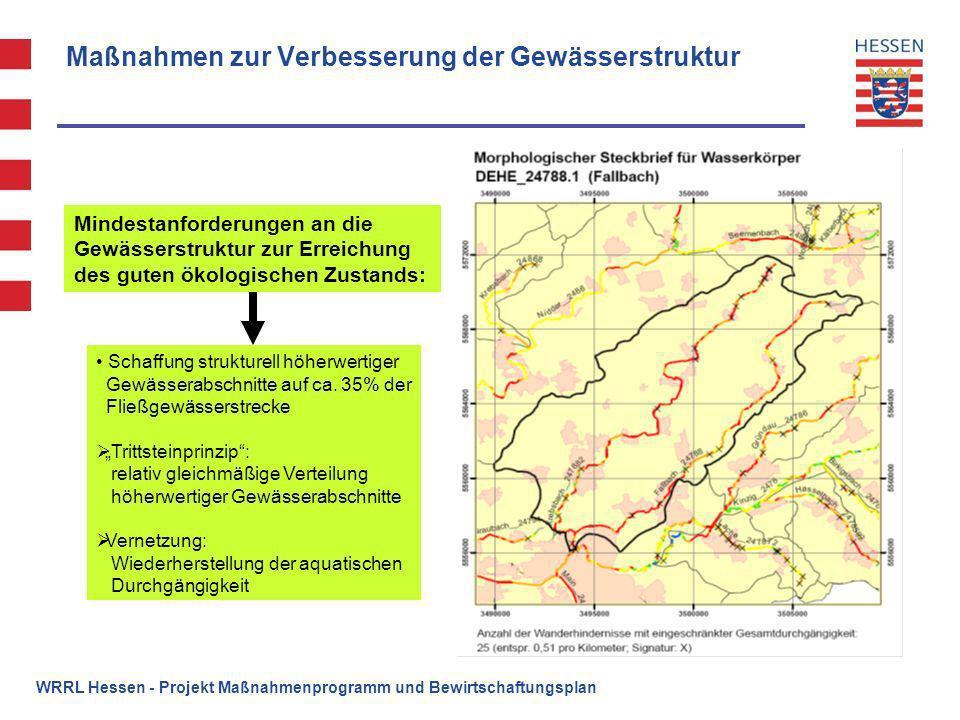 Maßnahmen zur Verbesserung der Gewässerstruktur