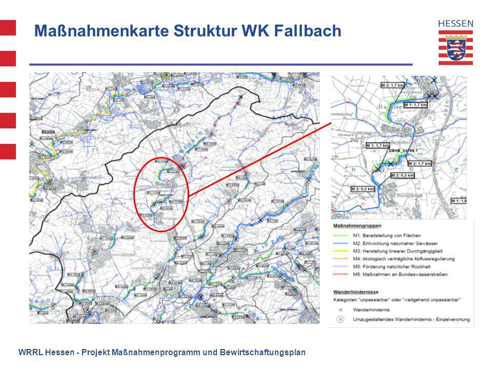 Maßnahmenkarte Struktur WK Fallbach