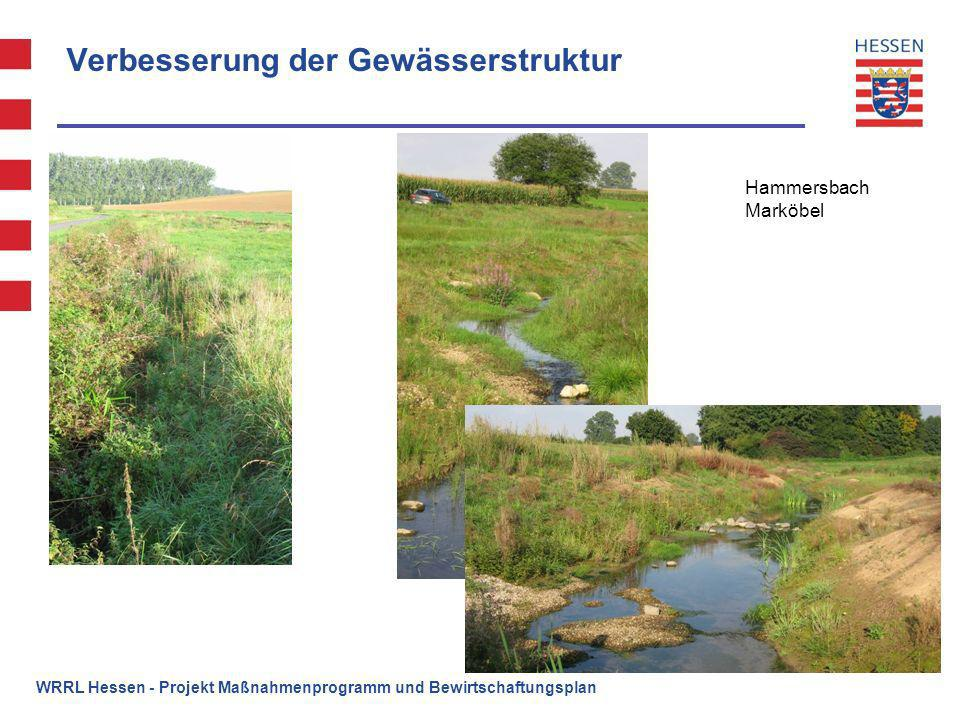 Verbesserung der Gewässerstruktur