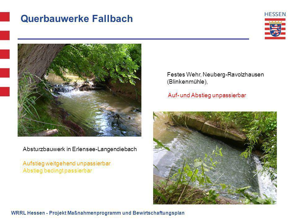 Querbauwerke Fallbach