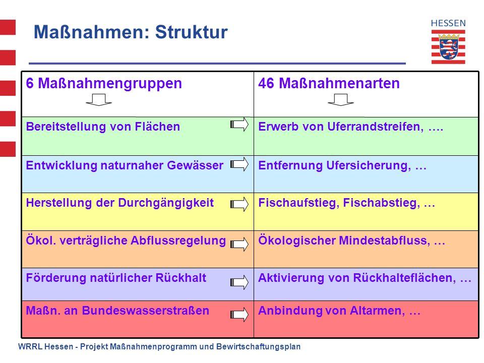 Maßnahmen: Struktur 46 Maßnahmenarten 6 Maßnahmengruppen