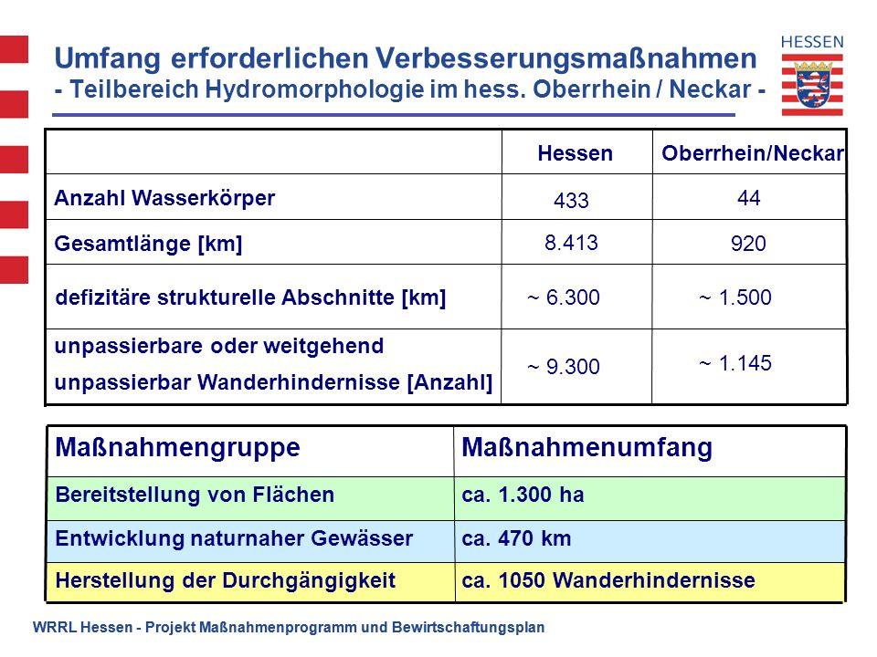 Umfang erforderlichen Verbesserungsmaßnahmen - Teilbereich Hydromorphologie im hess. Oberrhein / Neckar -