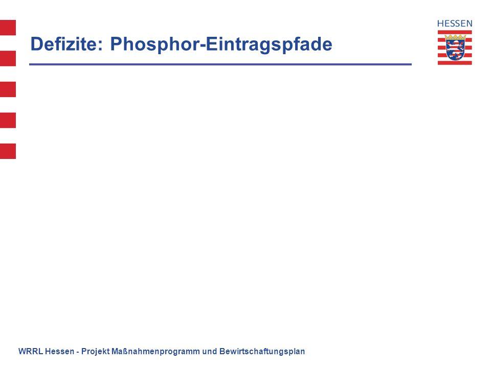 Defizite: Phosphor-Eintragspfade