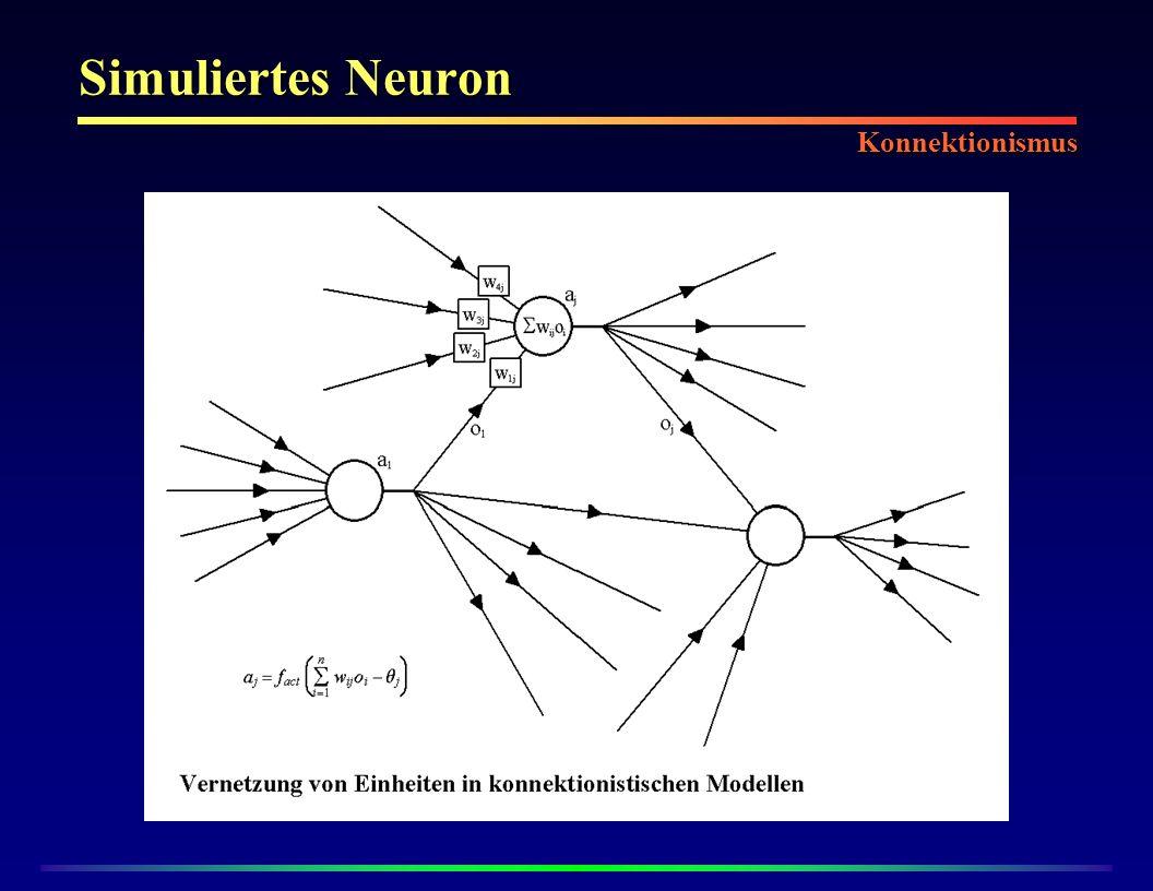 Simuliertes Neuron Konnektionismus