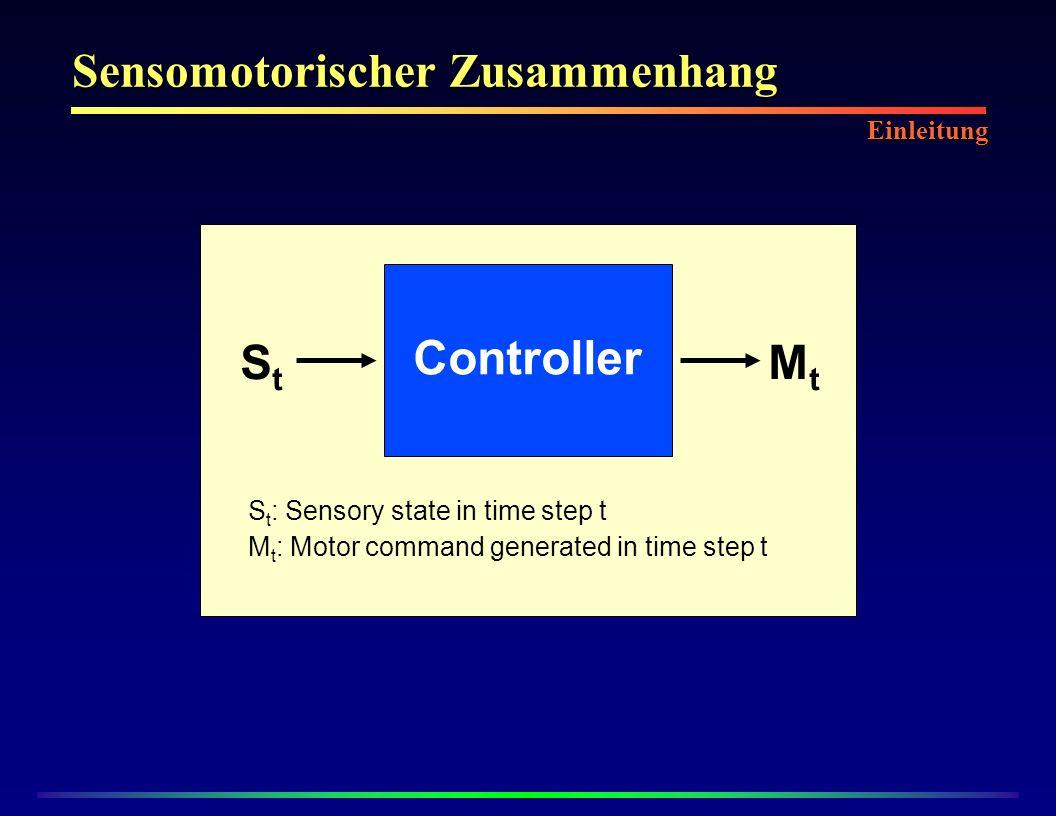 Sensomotorischer Zusammenhang